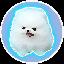 Biểu tượng logo của Mini Kishu