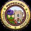 Biểu tượng logo của Pepe Cash