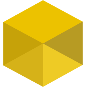 Casino Betting Coin