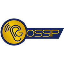 Gossip Coin