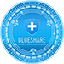 Blueshare Token