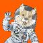 SpaceCorgi