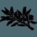 Biểu tượng logo của Francs