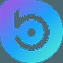 Biểu tượng logo của BORA