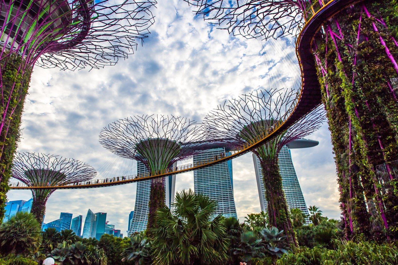 giá bitcoin: Singapore lên kế hoạch miễn thuế VAT cho tiền điện tử