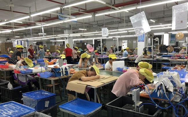 giá bitcoin: Nhà sản xuất xe đạp hàng đầu thế giới: Kỷ nguyên