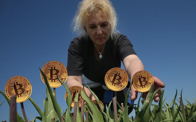 giá bitcoin: Bitcoin là hội chứng hoa tulip nở rộ rồi tàn lụi nhanh chóng hay giống như internet đời đầu cần thời gian để khai thác tiềm năng?