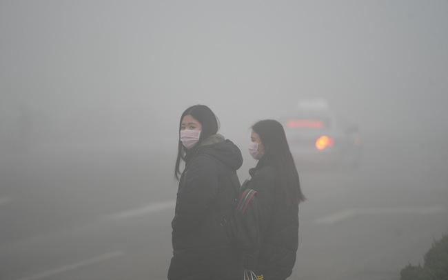 giá bitcoin: Nỗi đau dông dài của Trung Quốc: Nỗ lực phát triển nhà máy chạy năng lượng xanh, không ngờ phải trả giá bằng sự trượt dốc của nền kinh tế