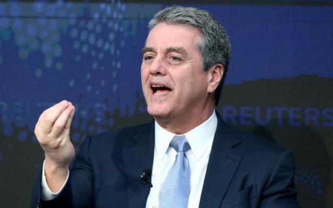 giá bitcoin: Tổng giám đốc WTO bất ngờ từ chức
