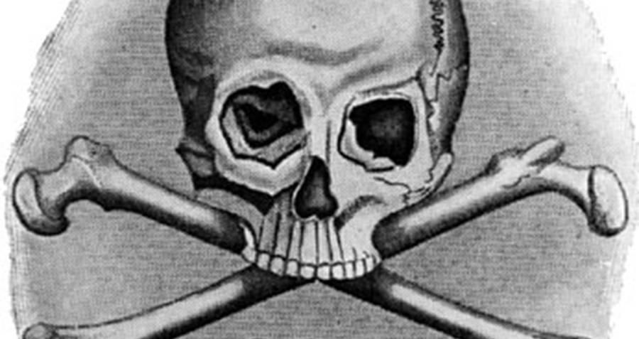 giá bitcoin: ICO lừa đảo – những con zombie bất tử của thị trường tiền số