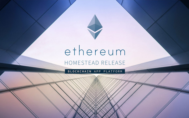 giá bitcoin: Ethereum lập đỉnh mới, Ripple bị đánh bật khỏi vị trí đồng tiền số lớn thứ 2 thế giới