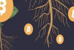 giá bitcoin: CryptoMeister giải thích tại sao Taproot lại quan trọng như vậy